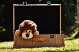 Teddy-Bear-Suitcase